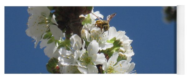 Bee On Cherry Blossoms Yoga Mat