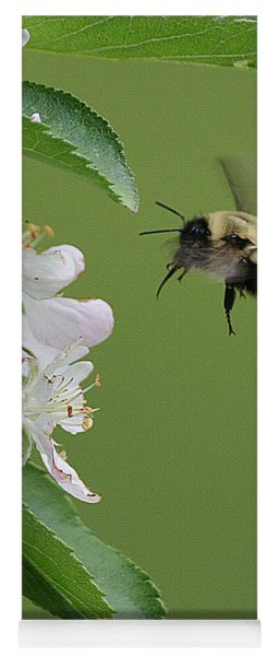 Bee With Apple Blossoms Yoga Mat