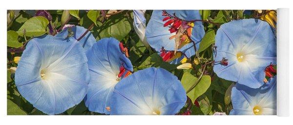Bhubing Palace Gardens Morning Glory Dthcm0433 Yoga Mat