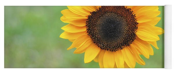 Big Bright Yellow Colorful Sunflower Art Print Yoga Mat
