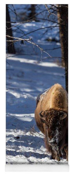 Bison In Winter Yoga Mat
