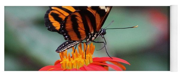 Black And Brown Butterfly On A Red Flower Yoga Mat