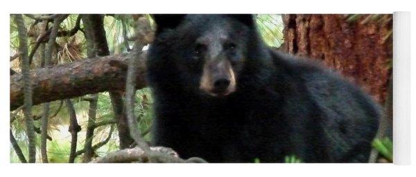 Black Bear 1 Yoga Mat