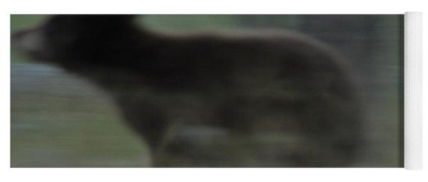 Black Bear Cub Running Yoga Mat