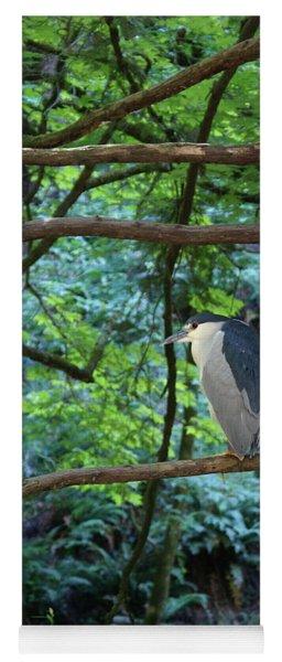 Black-crowned Night Heron Yoga Mat
