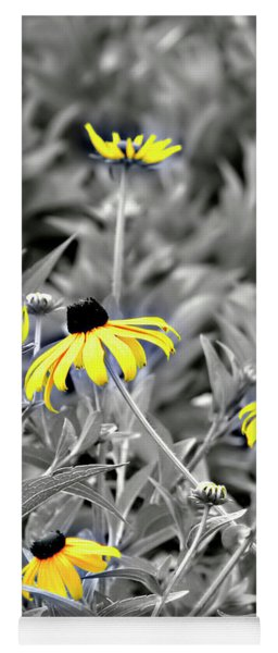 Black-eyed Susan Field Yoga Mat