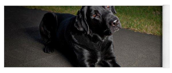 Black Labrador Retriever Lying Down Yoga Mat