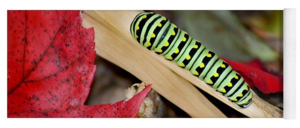 Black Swallowtail Butterfly Caterpillar Yoga Mat