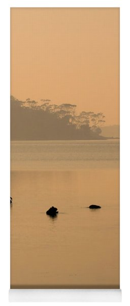 Black Swan Sunrise Yoga Mat