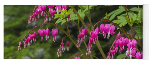 Bleeding Hearts Yoga Mat