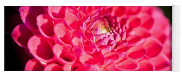 Yoga Mat featuring the photograph Blooming Red Flower by John Wadleigh