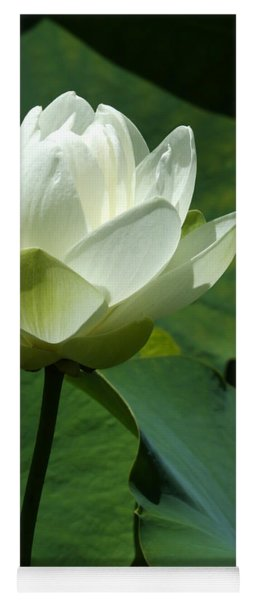 Blooming White Lotus Yoga Mat