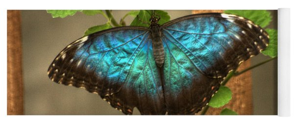 Blue And Black Butterfly Yoga Mat