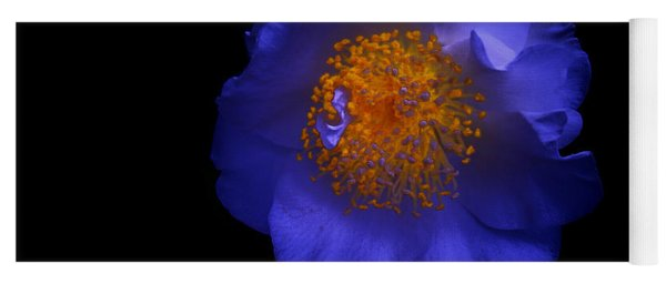 Blue Beauty Yoga Mat