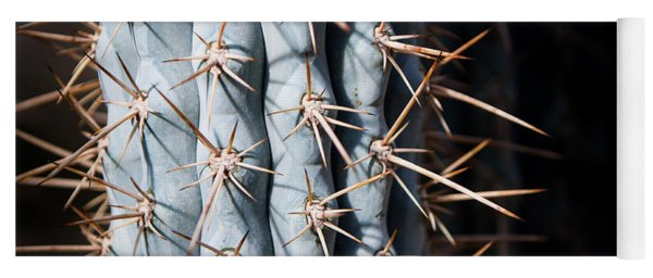 Yoga Mat featuring the photograph Blue Cactus by John Wadleigh