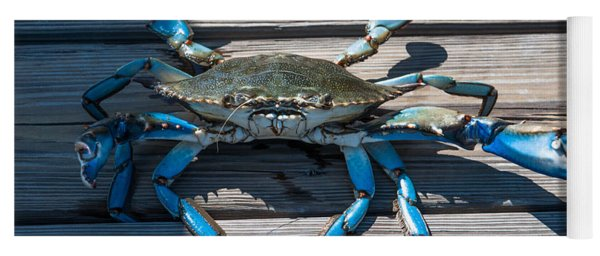 Blue Crab Pincher Yoga Mat