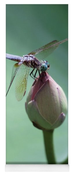 Blue Dragonflies Love Lotus Buds Yoga Mat