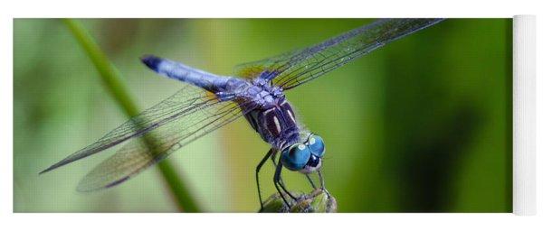 Blue Dragonfly Yoga Mat