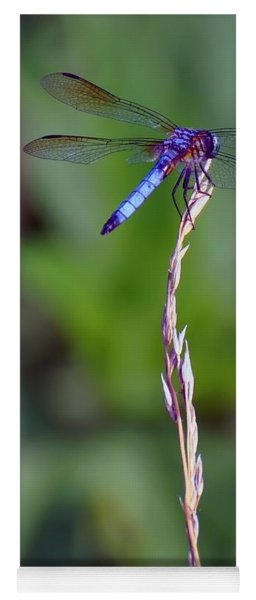 Blue Dragonfly On A Blade Of Grass  Yoga Mat