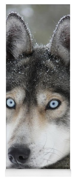 Blue Eyes Husky Dog Yoga Mat