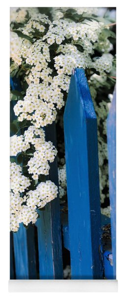 Blue Garden Fence With White Flowers Yoga Mat