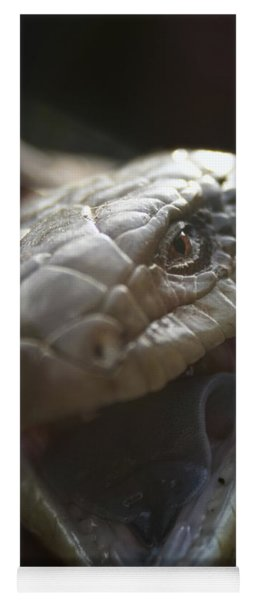 Blue Tongue Lizard Yoga Mat