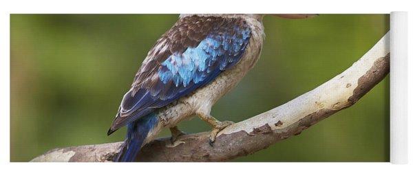 Blue-winged Kookaburra Queensland Yoga Mat