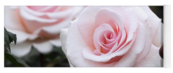 Blush Pink Roses Yoga Mat