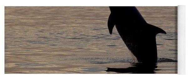 Bottlenose Dolphin Yoga Mat