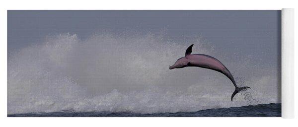 Bottlenose Dolphin Photo Yoga Mat