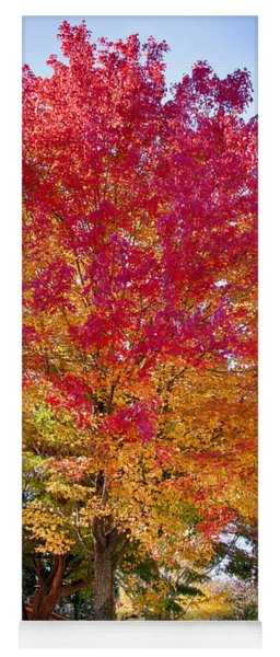 brilliant autumn colors on a Marblehead street Yoga Mat