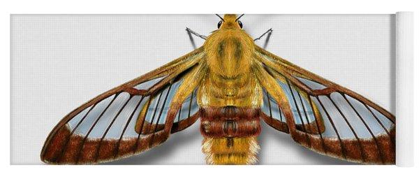 Broad-bordered Bee Hawk Moth Butterfly - Hemaris Fuciformis Naturalistic Painting -nettersheim Eifel Yoga Mat