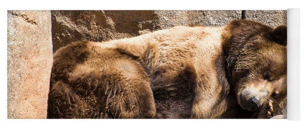 Brown Bear Asleep Again Yoga Mat