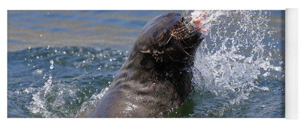 Brown Fur Seal Throwing A Fish Head Yoga Mat