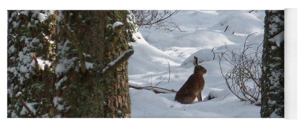 Brown Hare - Snow Wood Yoga Mat