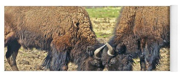 Buffaloes At Play Yoga Mat