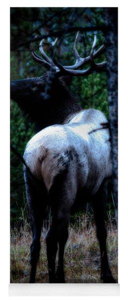 Bull Elk In Moonlight  Yoga Mat
