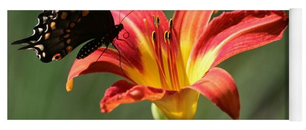 Butterfly And Lily Holiday Card Yoga Mat