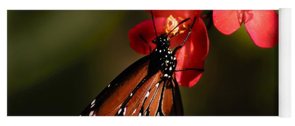 Butterfly On Red Blossom Yoga Mat