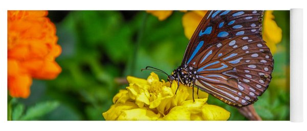 Butterfly On Yellow Marigold Yoga Mat