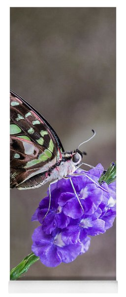 Butterfly - Tailed Jay I Yoga Mat