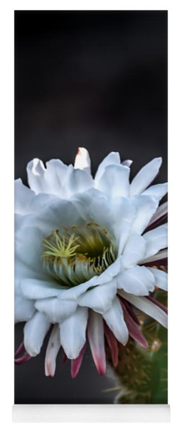 Cactus Beauty Yoga Mat