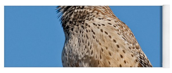 Cactus Wren Singing Yoga Mat