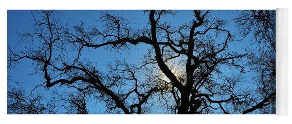 California Oak Sun Tree Yoga Mat