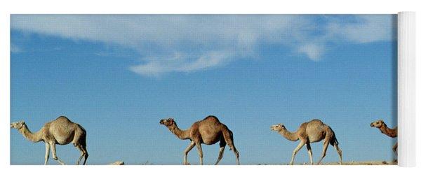 Camel Train Yoga Mat