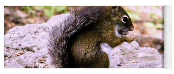 Campground Pine Squirrel Yoga Mat