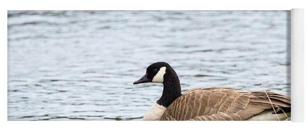Canada Goose Yoga Mat