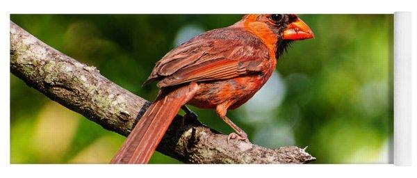 Cardinal Yoga Mat