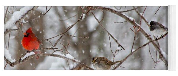 Cardinal Meeting In The Snow Yoga Mat