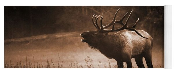 Cataloochee Bull Elk In Sepia Yoga Mat